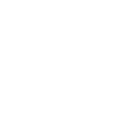 Ícone PandaPay virado